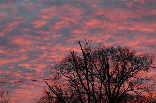 TN Sunset
