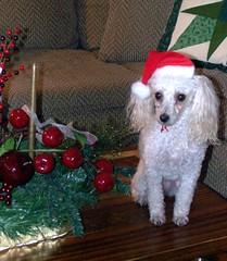 Brigit..our own Special Santa!