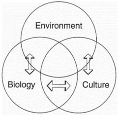Holistic perspective of the environment (change with time)