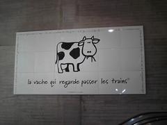 La vache qui regarde passer les trains