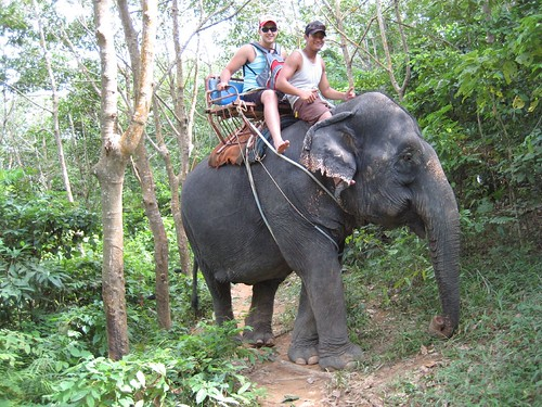 Elephant riding with rob