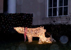 Christmas orz