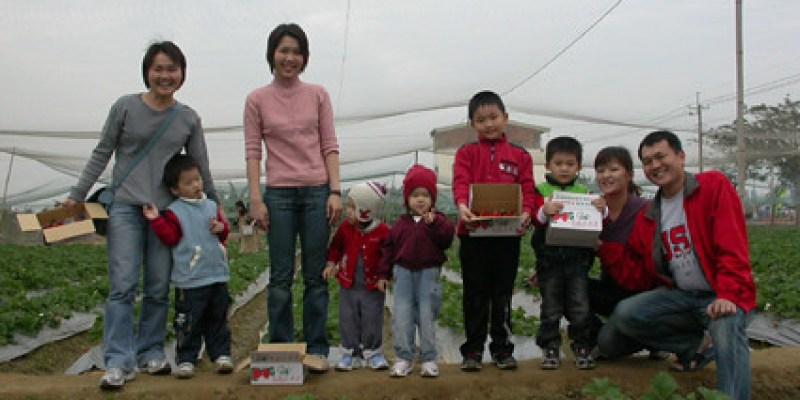冬天怎麼可以不採草莓?(2.5ys)