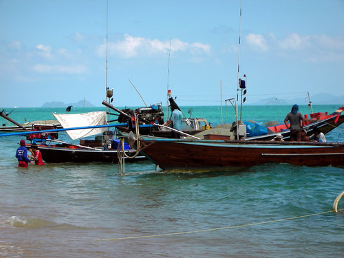 Longtailboote