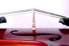 violin perfect