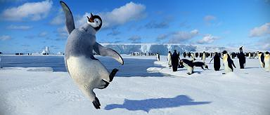 Our world will never want for gay penguin jokes.