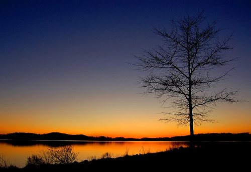 Loudon Lake, November 07