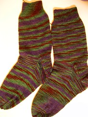 black watch socks