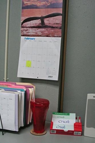 Whale Tail calendar