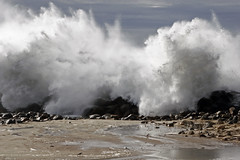 morro-rock-big-waves_mg_2346