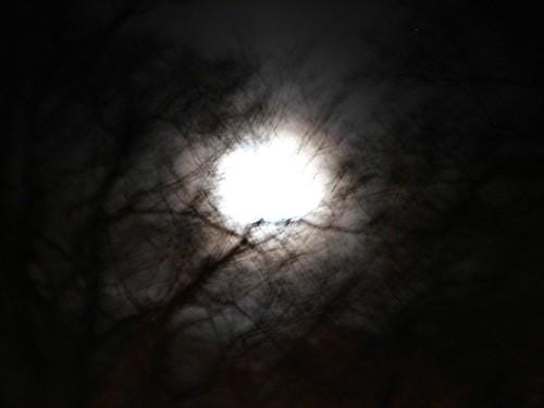 The Moon Says Hi