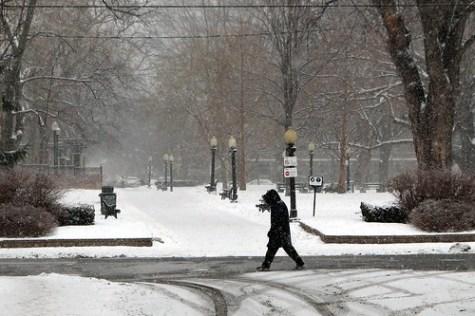 Snowing on Allan Gardens -- http://www.flickr.com/photos/lexnger/373693848/