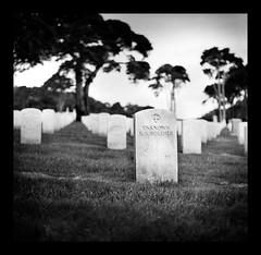 Unknown U.S. Soldier by mrhollygolightly [ Joel Aron ]