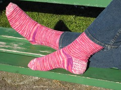 Socks_2007Jan15_PeppermintPink