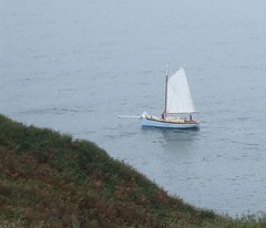 Falmouth Quay Punt