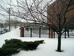 Virgin piles of snow