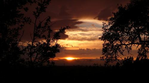 sunset after raining (by bookgrl)