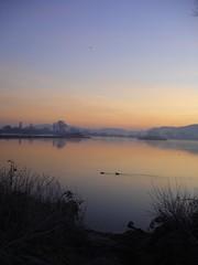 Sunrise at Attenborough