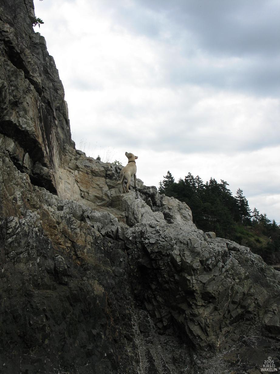 Ceilidh Climbs