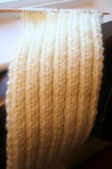 Ribbed Scarf (In Progress)