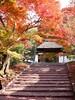 Photo:Gate of Anrakuji temple (安楽寺山門) By