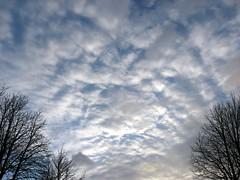 Der Himmel über Dahlem