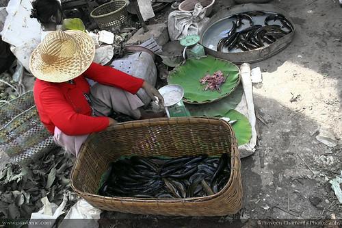 Sisophon Market