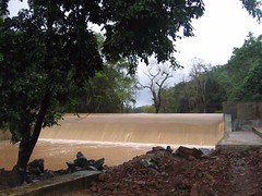 Kollibacchalu Dam -Malenadu Heavy Rain Effects Photography By Chinmaya M.Rao   (96)