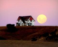 big ole house and big ole moon (alternate crop...