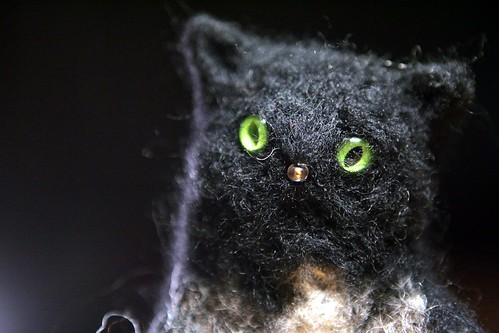 a black Woolcat with brown eyes close-up
