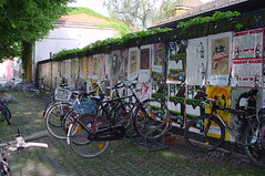 mad bikes in germany