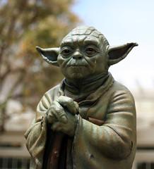 Yoda's tear