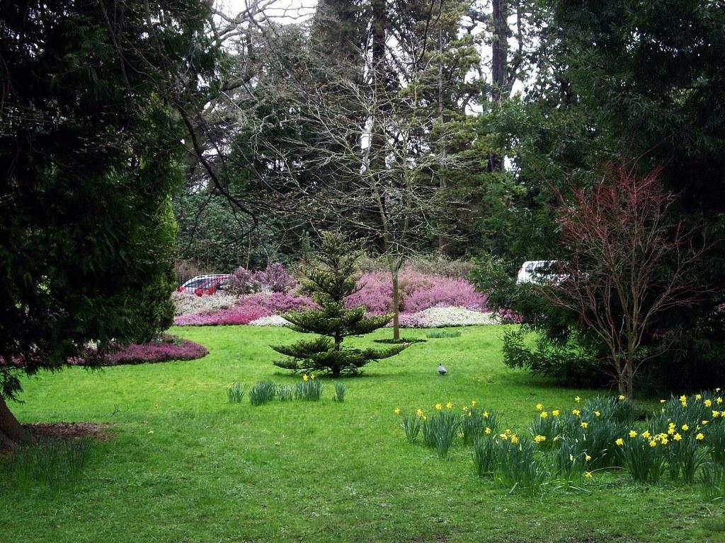 070305.23.Somset.Bath.Twerton.BotanicalGrdns