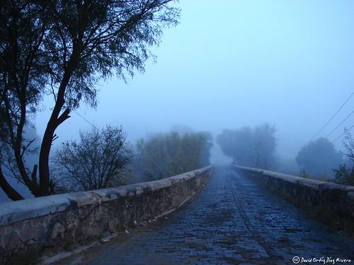 Hipnos Flickr Old road to San Ignacio in a foggy day