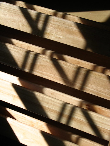 Lines of Shadow