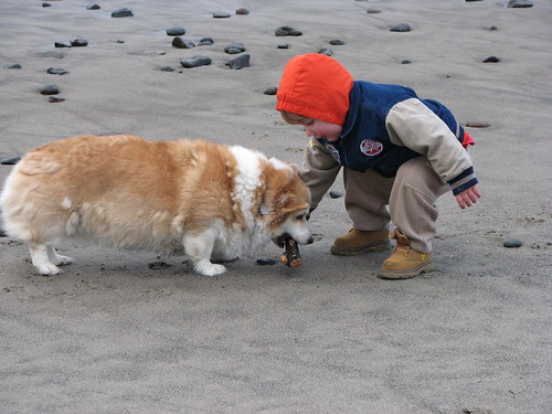 Jacob and Susie - Neskowin Beach