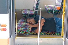 10 March 2007 (Auckland bus driver)