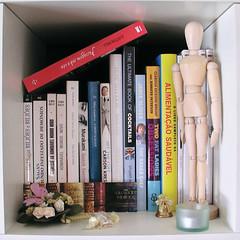 31 days - 31 photos: Day 14 - Bookshelf