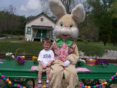 PeterCottonTail2007_00