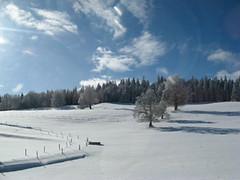 Vallée de Joux janvier 07