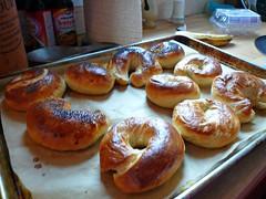 Bagels_Baked