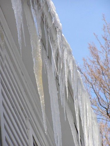 Huge icicles!