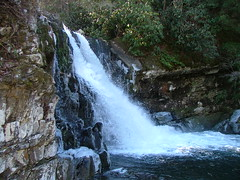 Abrams Falls 1