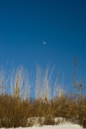 moon-in-the-day-0227