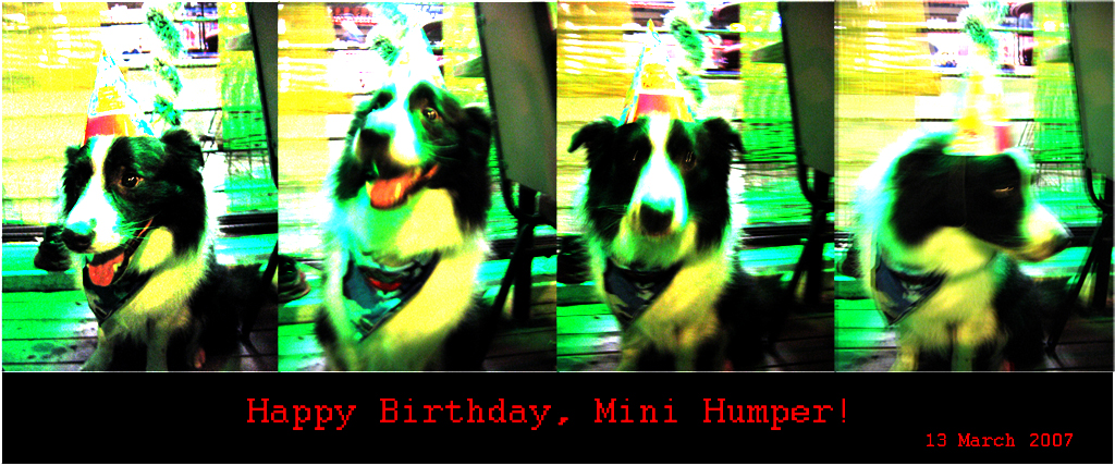 Minihumper's birthday card