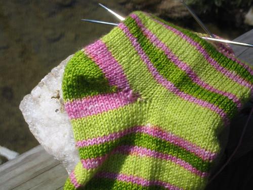 appletini socks heel