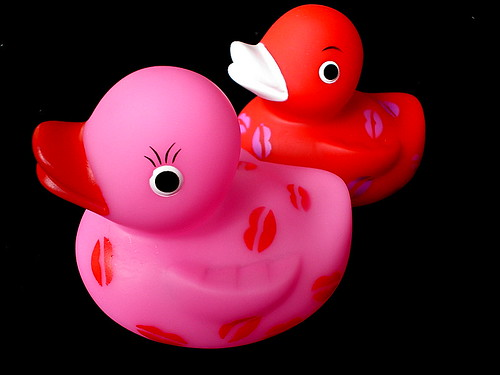 Duckie Love