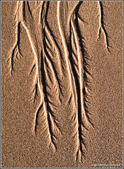fine grained sand feature