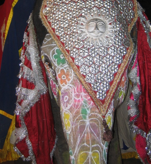 Elephant decked out