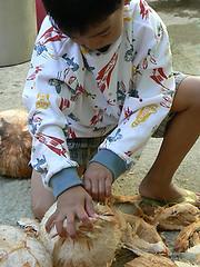 child_coconut